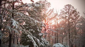 Why You Definitely Should NOT Be Dreading Winter In Alabama