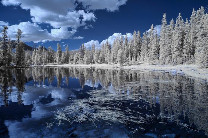 Snowy Utah Scenery