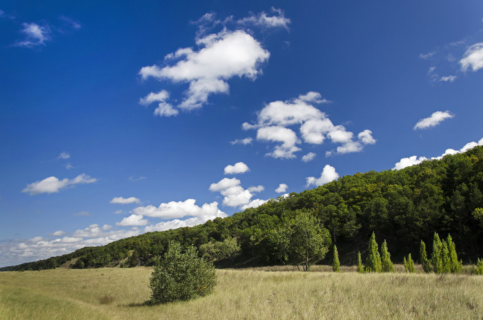 9. Check out how the foredunes of Cowles Bog vanish into the horizon underneath this gorgeous blue sky at the Indiana Dunes National Lakeshore!