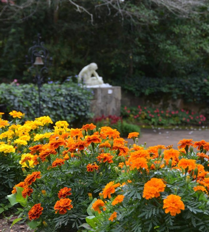 8. Take a Fall Foliage Tour at Jasmine Hill Gardens in Montgomery.