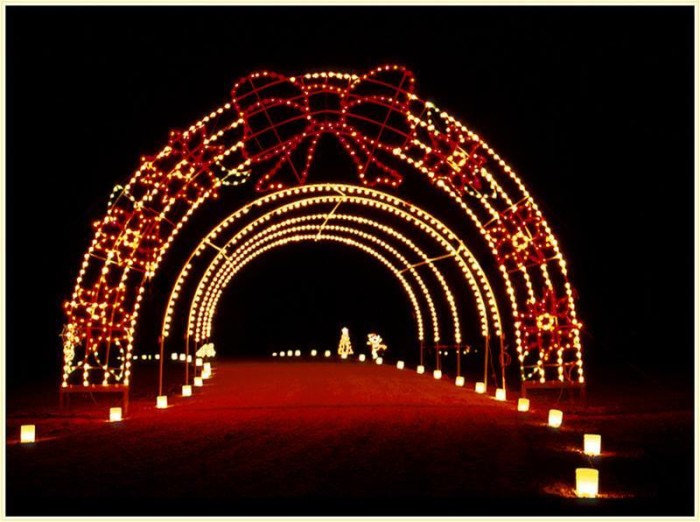 13. Take a drive through the Galaxy of Lights at Huntsville Botanical Garden.