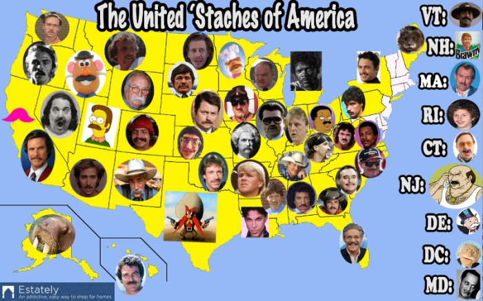 3. The United 'Staches of America