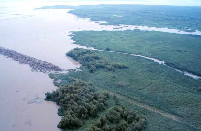 3. 1986 – Atchafalaya National Wildlife Refuge established near Baton Rouge.