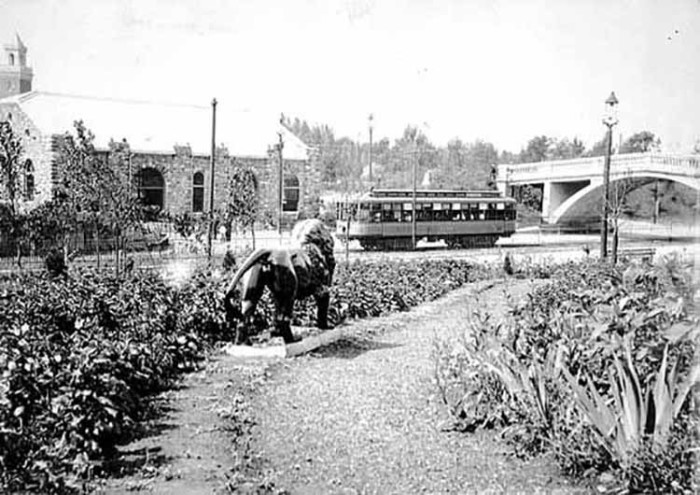 11. 1906 - St. Paul.