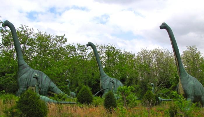 7. Dinosaur World