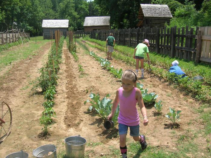 3. Farm life
