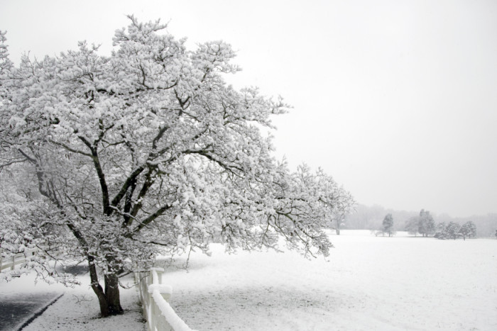 2. The first snow...