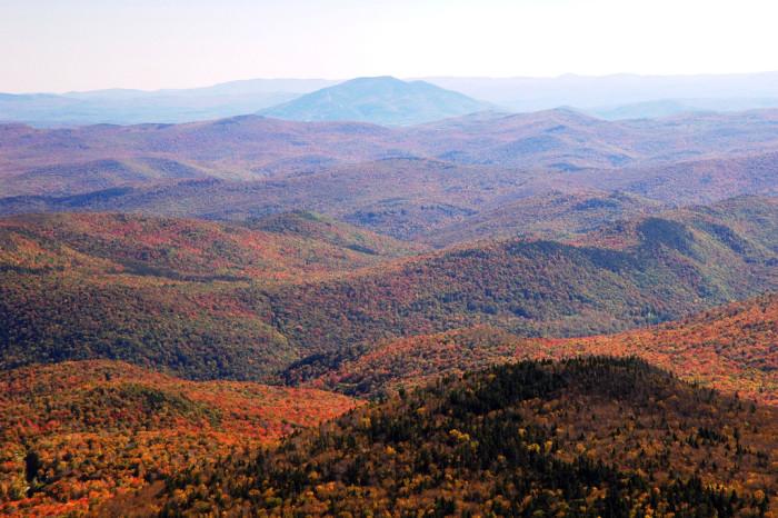 13.Vermont Foliage.