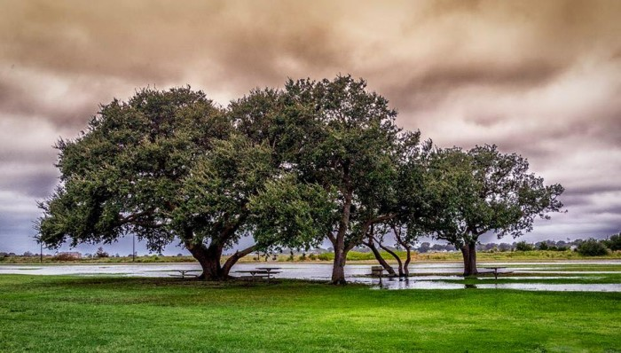 1. An overcast sky only adds to the beauty of this scene at Fort Monroe in Hampton. Thanks to Scott MacKay for sending this beautiful photo.