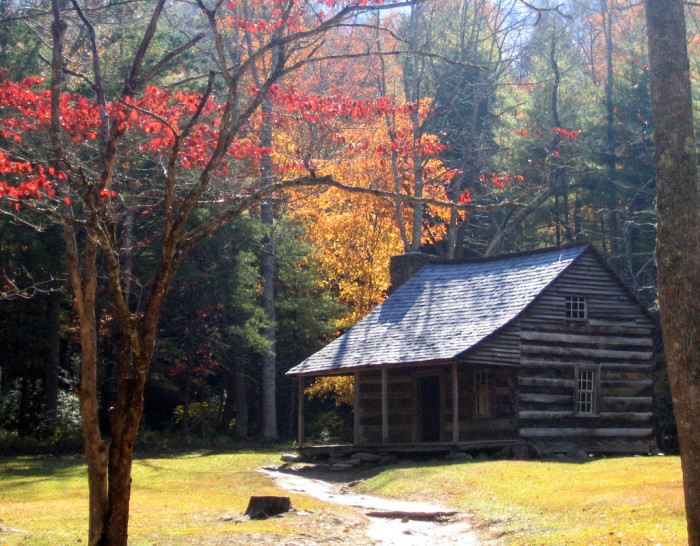 6) This is the only way you could get us to live in a cabin.