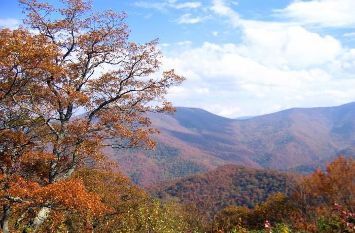 7) Those autumn colors, though.