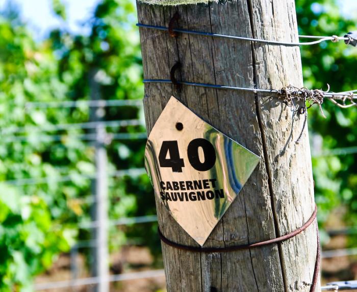 4.  Hillis Sugarbush Farm & Vineyard - 206 Sugarbush Farm Road, Colchester, VT
