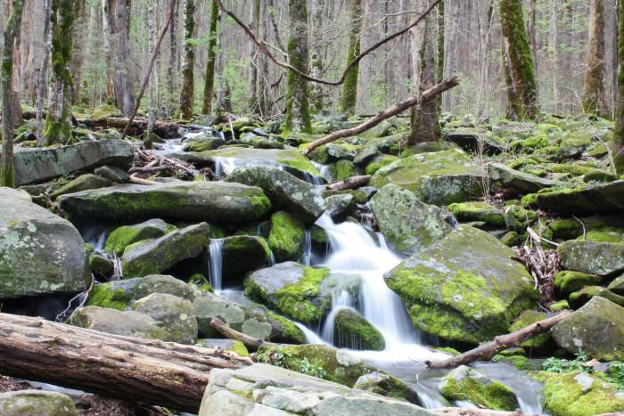 9) A hidden mountain creek.