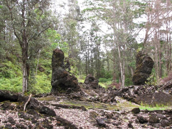 2) Lava Tree State Monument