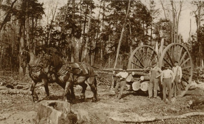 7) Logging wheels, 1915.