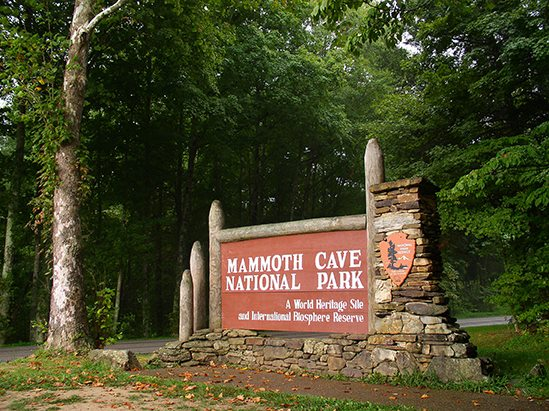 3. More Mammoth Cave.