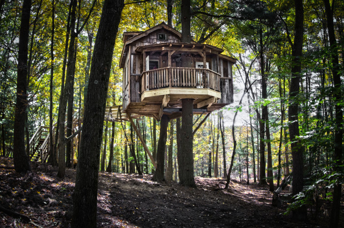 8. The Mohicans Treehouses (Glenmont)