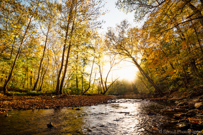 5. This one is a picture of Clear Creek at the Cedar Bluffs Nature Preserve just to the south of Bloomington. This shot is incredible!