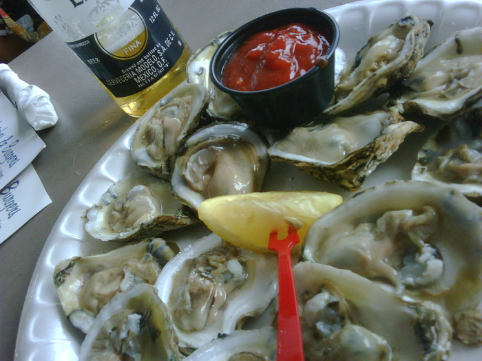 8. The Oysters.