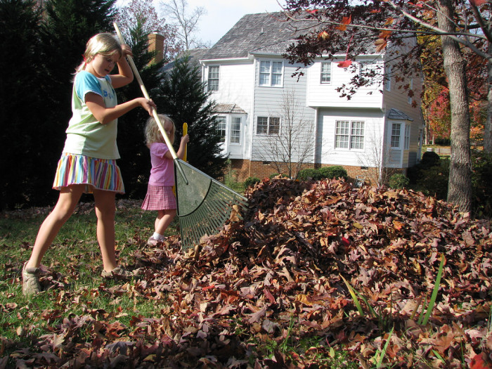 1. Visiting family + kids out of school + leaves on the ground = FREE LABOR