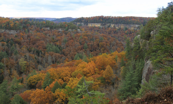 7. Red River Gorge
