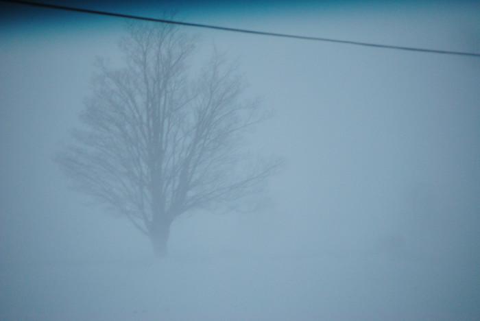 1.A whiteout.