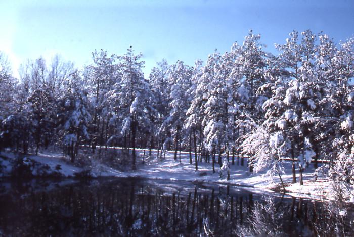 "1. ""Kentucky winters are beautiful."""