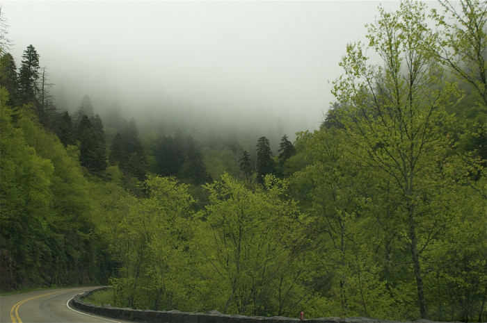4) They don't call 'em the Smoky Mountains for nothing!