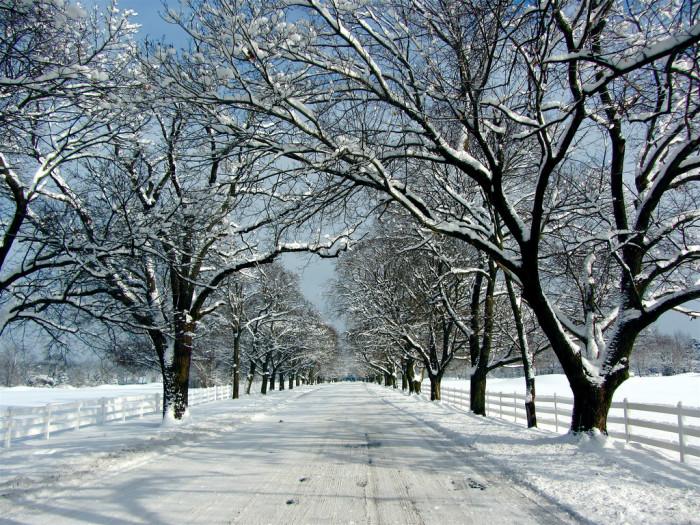6) Snow days!