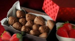 Suzin L. Chocolatier