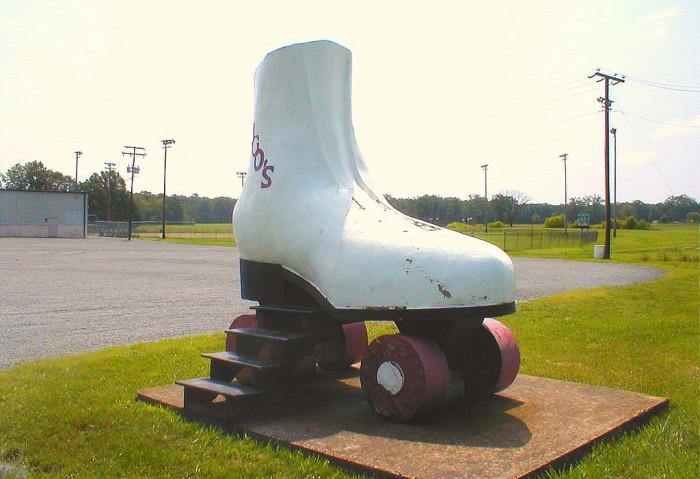 7. The Giant Skate, Bealeton