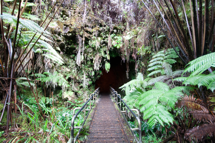 Don't miss Thurston Lava Tube.