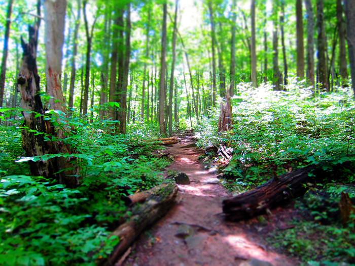 10. Take a hike.