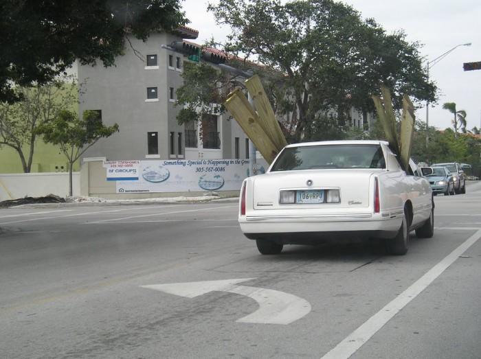 4.  Bad drivers.