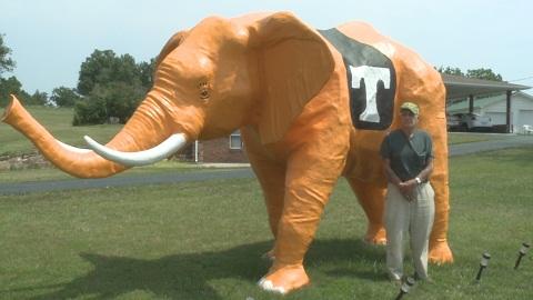 7) Willard Nivin's Orange Elephant - Van Buren County