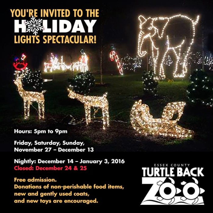 1. Enjoy the holiday light display at Turtle Back Zoo.