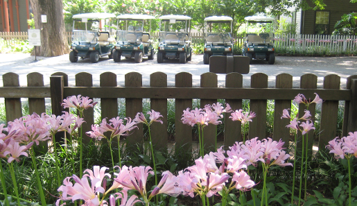 7. According to the town's website, New Harmony is a golf cart community.