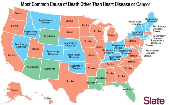 11. The Leading Cause Of Death Behind Heart Disease And Cancer