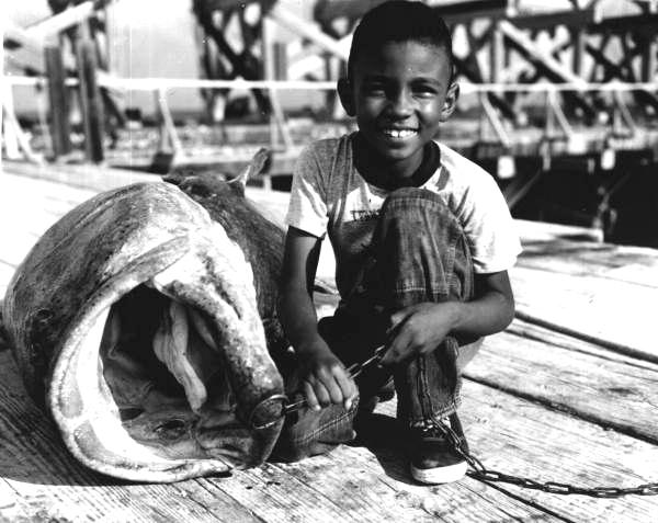 11. We caught really big fish.