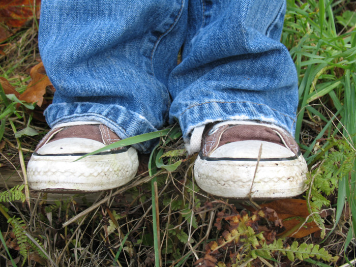 7. Do you wear shoes?