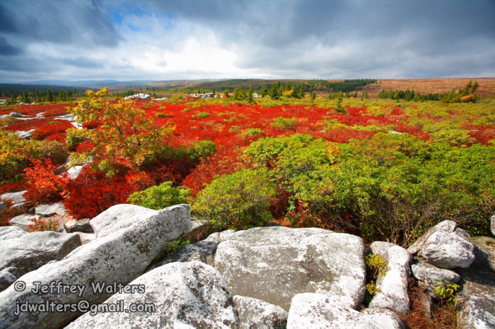 6. The views at Dolly Sods will take your breath away.