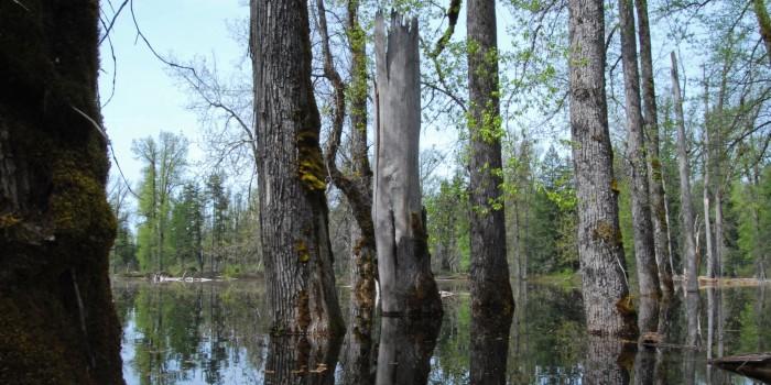 1. Disappearing Lake