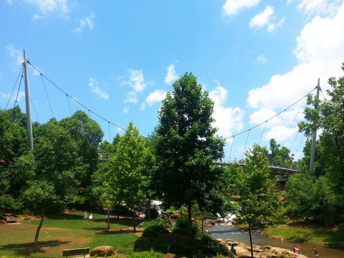 15. Take a trip to downtown Greenville and visit Falls Park on the Reedy.
