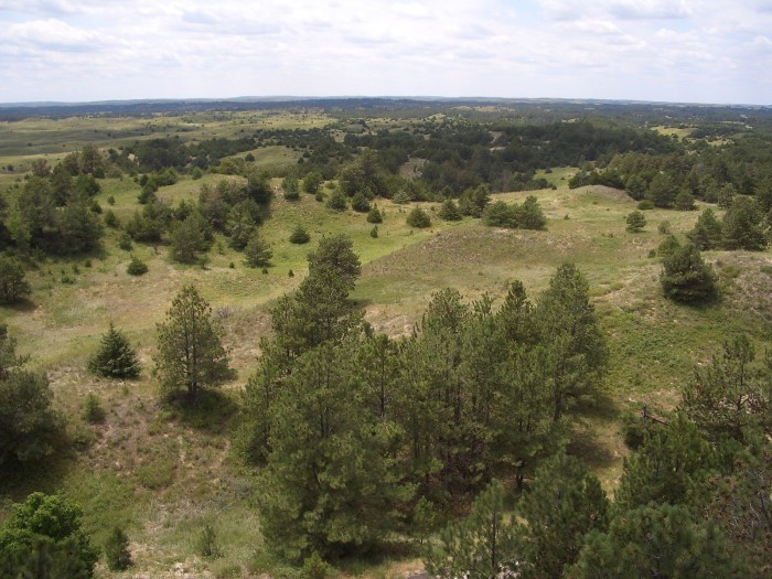 Nebraska National Forest is split into two ranger districts: the Bessey Ranger District in the Sandhills and Pine Ridge Ranger District in Thomas, Dawes, Blaine, and Sioux counties. Together they encompass nearly 142,000 acres.