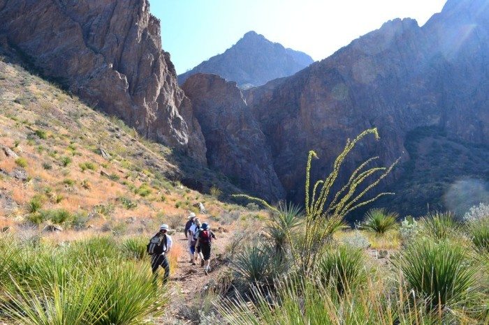 8) Cattail Falls Trail at Big Bend National Park