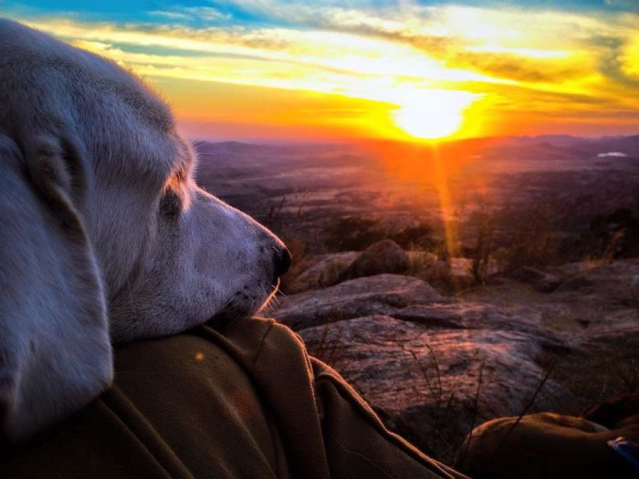 4. People from Oklahoma appreciate their state's natural beauty, and always take time to enjoy one of those stunning Oklahoma sunsets.