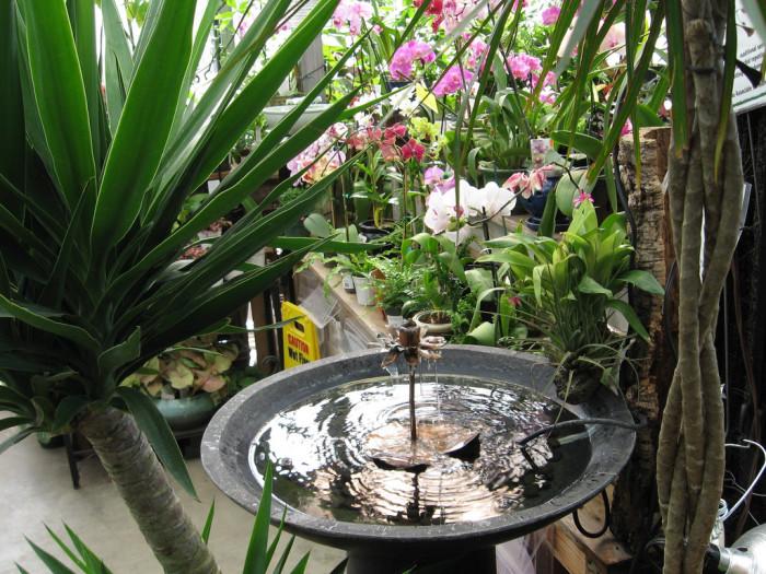 7.The Garden of Eatin' Café – Williston, VT.