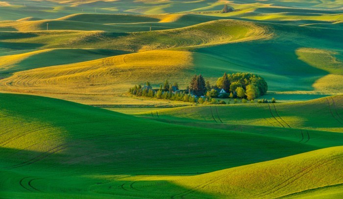 8. A warm day on the Palouse.