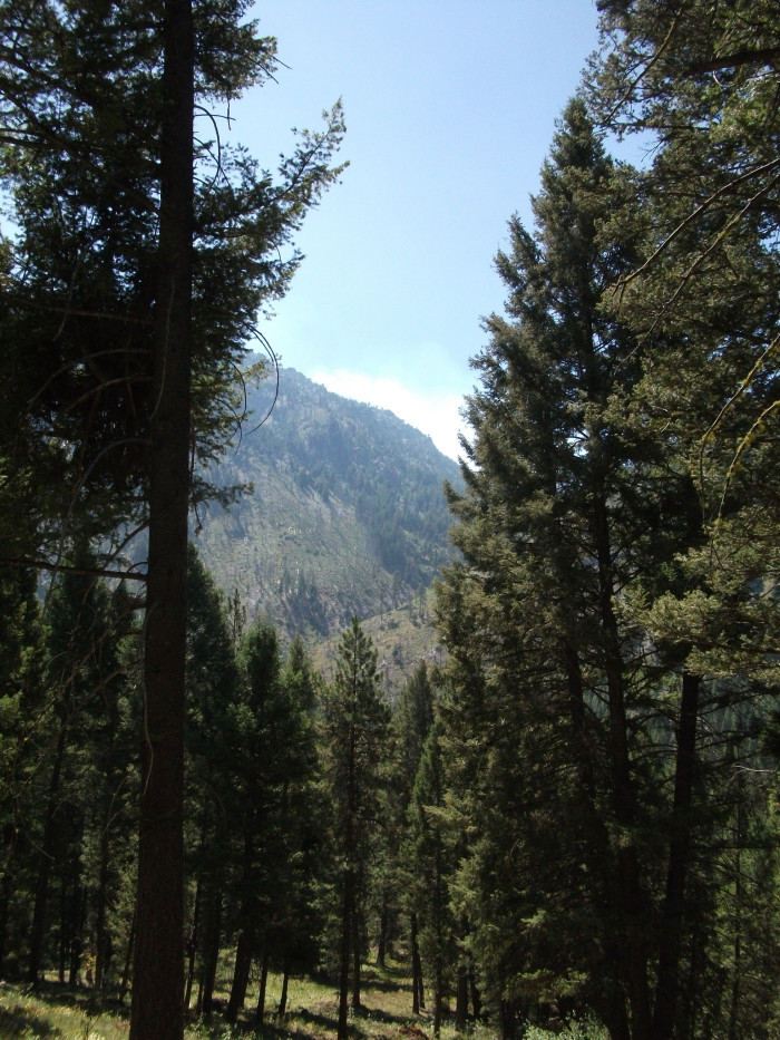 6. Sawtooth National Forest - Raft River Division
