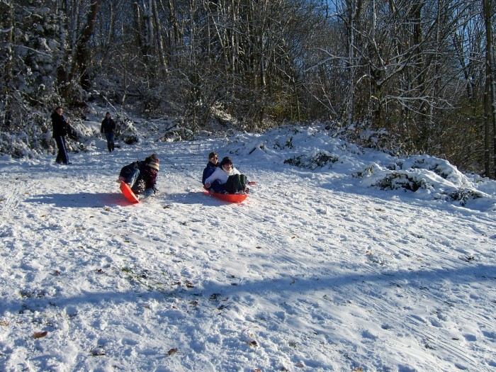 7. If it snows, we can go sledding!